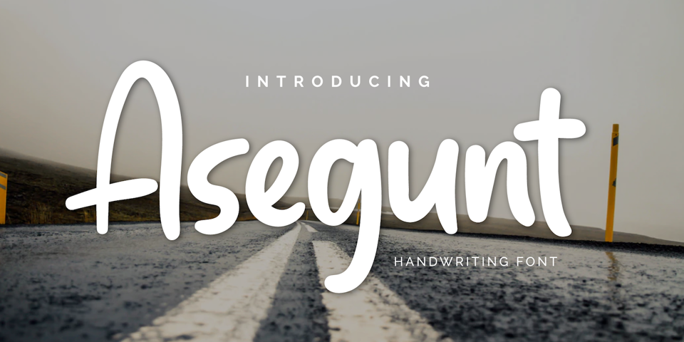 Asegunt font page