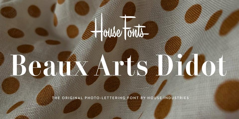 Plinc Beaux Arts Didot font page