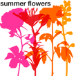 We Love Nature™ Summer Flowers