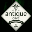 Antique Olive®