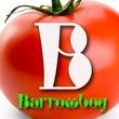 Barrowboy