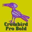 Crowbird