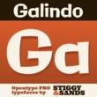 Galindo Pro