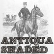 Antiqua Shaded