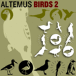 Altemus Birds Two
