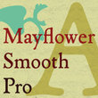 P22 Mayflower Smooth