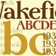 Wakefield™