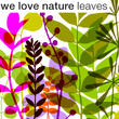 We Love Nature™ Leaves