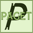 Paget™