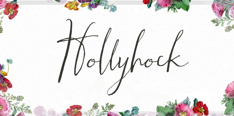 hollyhock hollyhock