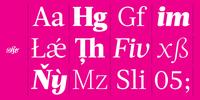 Acta Font Download