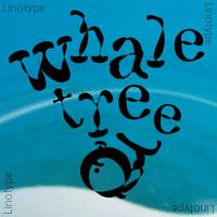 F2F Whale Tree