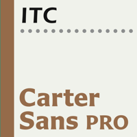 Carter Sans Poster