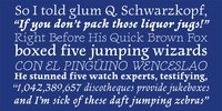 Newt Serif Download