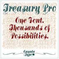 Using Treasury Pro by Canada Type