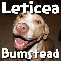 Leticea Bumstead