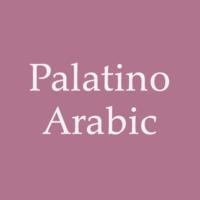 Palatino Arabic