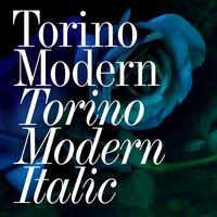Torino Modern