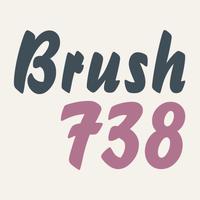 Brush 738