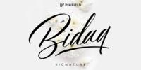 Bidaq Font Download