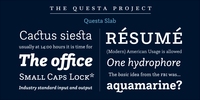 Questa Slab Font Download
