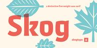 Skog Sans Font Download