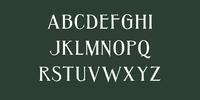 Jungle Font Download