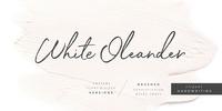 White Oleander Font Download