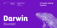 Darwin Rounded Font Download