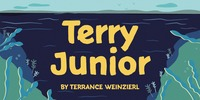 Terry Junior™ Font Download