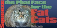 Squeeze--Phat Face for the Fat Cats
