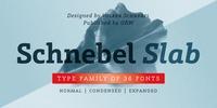 Schnebel Slab Pro Font Download
