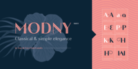 Modny™ Font Download