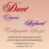 Duet DT
