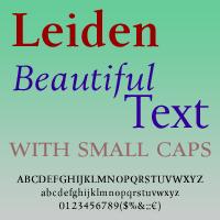 Leiden DT