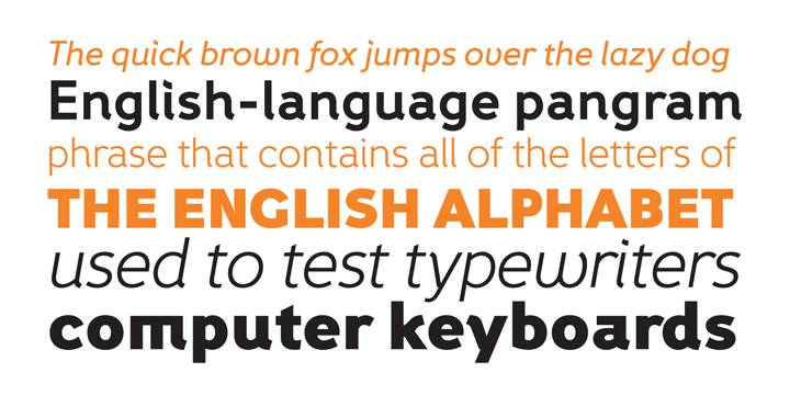 Fox Grotesque | Webfont & Desktop font | MyFonts