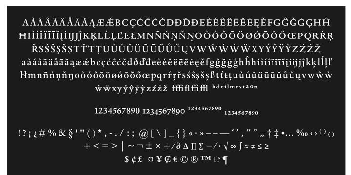 Dante® - Webfont & Desktop font « MyFonts