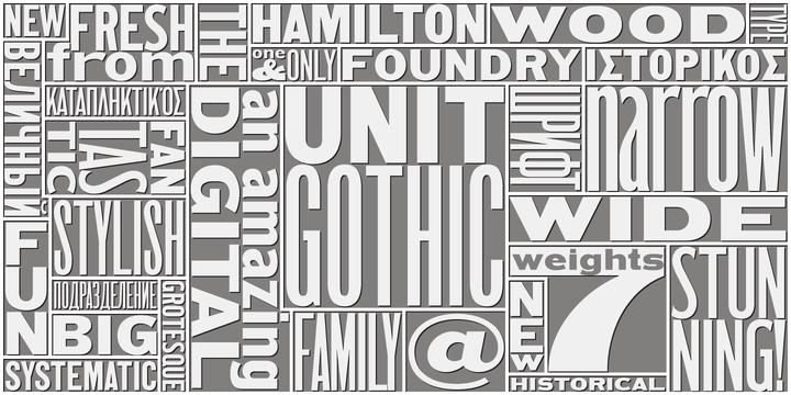 HWT Unit Gothic   Webfont & Desktop font   MyFonts
