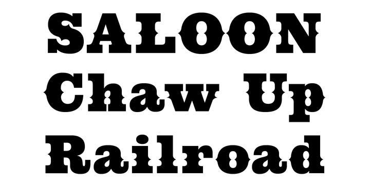 cowboy western webfont desktop font myfonts