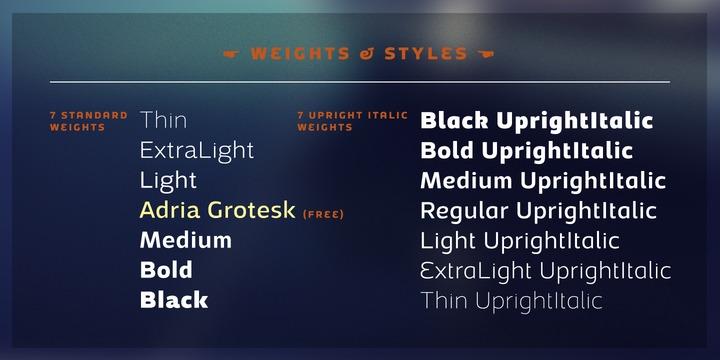 Adria Grotesk | Webfont & Desktop font | MyFonts