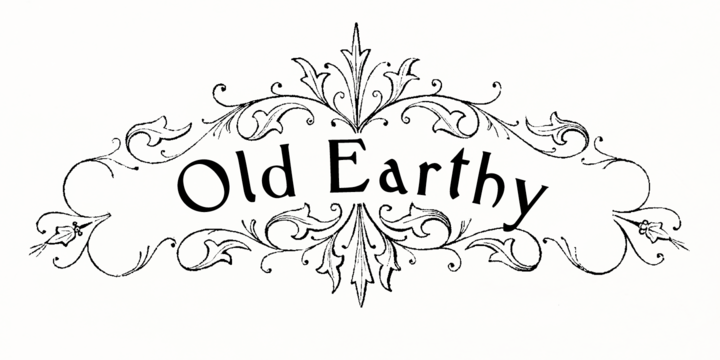 Old Earthy Webfont Desktop Font Myfonts