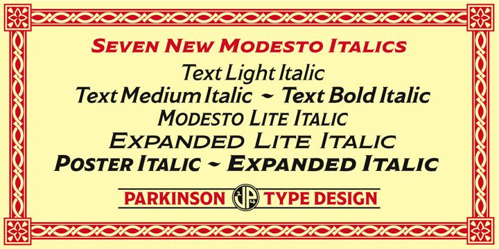 Modesto | Webfont & Desktop font | MyFonts