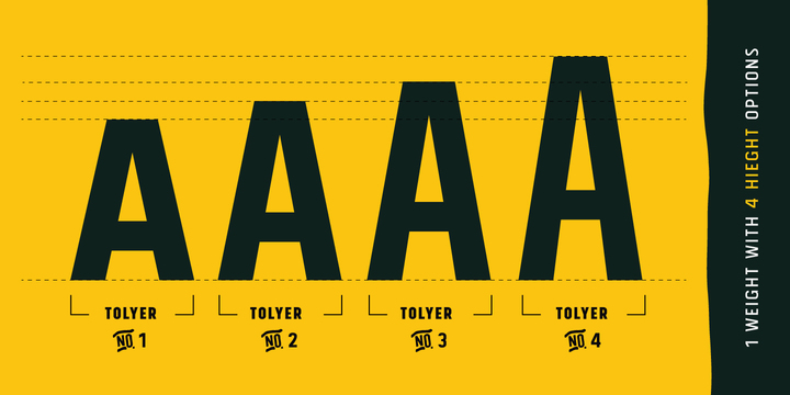 146844 - Tolyer (50% discount, from 6€)