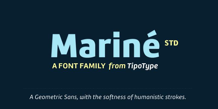 Mariné STD - Webfont & Desktop font « MyFonts