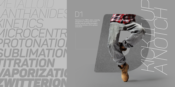 Panton | Webfont & Desktop font | MyFonts
