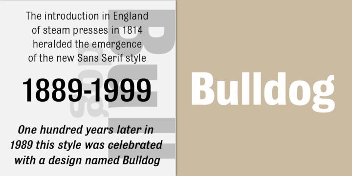 Bulldog | Webfont & Desktop font | MyFonts