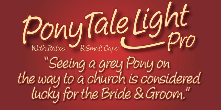 Pony Tale Light Pro