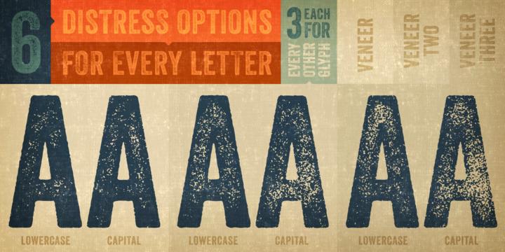 Veneer | Webfont & Desktop font | MyFonts