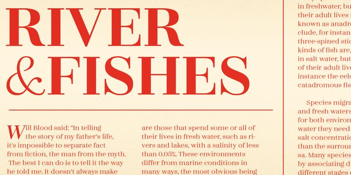 Zahrah | Webfont & Desktop font | MyFonts