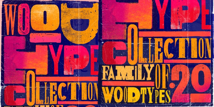 Wood Type Collection Webfont Desktop Font Myfonts